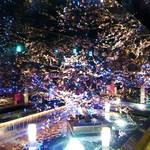 zensekikoshitsuumekonoie - きれいな梅の木✿✿✿