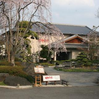 四季折々に変化する日本庭園に囲まれ、落ち着いた雰囲気のお店です。