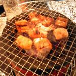 とび蔵 - 厚木ホルモン 焼き肉 とび蔵@本厚木駅前店 シロコロホルモン