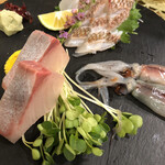 鮨 清水 - ホタルイカ刺しは生姜しょうゆで
