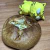 ル プロヴァンス - 料理写真:ポテトフランス140円(税別)
