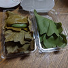 鉢の木 - 料理写真: