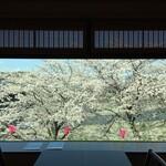 志太豊 - 店内窓から〜桜の季節昼〜