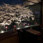 志太豊 - 店内窓から〜桜の季節夜〜
