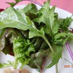 いたりあ食堂ヘップバーン - 珍しい葉のサラダ