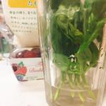 旬八青果店 - バジルは先を少しカットして水につけておくと長持ち。葉っぱは水に浸からないように!