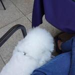 BISTRO FAVORI - ママと一緒に座れます!