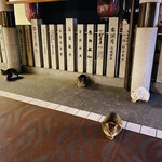 130550751 - ネコもソーシャル・ディスタンスを守ってる♡
