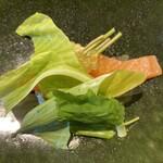 130570359 - 天城 下山さんの3年アマゴ 0年黄金イクラ 長野県の山菜たち