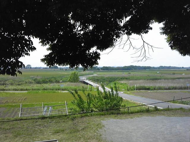 蕎麦 阿き津 - 席から見える風景