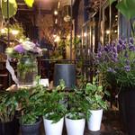 ボタニカルアイテムアンドカフェ シアン - ミニブーケか、このミニ観葉植物から選べます
