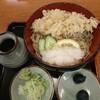 そば処 小玉家 - 料理写真:天ぷらおろしそば