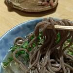 tempurakaisenjizakeiyasaka - かけそば(冷)