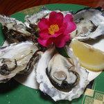 料理民宿 ささき - 料理写真:生牡蠣 5粒