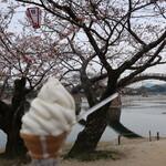 むさし - 錦帯橋の桜をバックにした、こだわりバニラ(マイルドコーン)