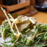 八ヶ岳小僧 - 2020.5 山菜天ぷら(ヤマブドウ、ヤマノミ、ハンゴンソウの穂先、ノビル)