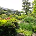 優雅 - 部屋から見える庭