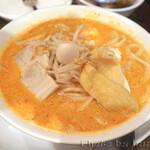 カフェ・シンガプーラ 海南鶏飯 - 麺