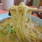 豚豚亭 - 中細ストレート麺。ここの味噌にはこの麺がマッチ!