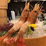 Hokkaidoubussan - ボタン海老