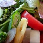 DAICHINO RESTAURANT - ダイチノレストランの 地元の 新鮮な お野菜