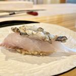 難波 鮨 栞庵 やましろ - 太刀魚