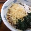 長寿庵 - 料理写真:冷やし