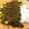 Ravirinsu - 料理写真:新発売 夏期限定カレー『ネギまみれの肉キーマ』@840 にんにくの芽入り@1000がオススメです!