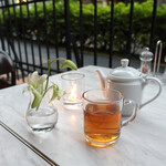 CAFE GITANE - ダージリン