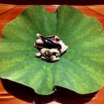 131587862 - 舞鶴のトリ貝〜大好物の舞鶴トリ貝。京丹後の『縄屋』さんで初めて頂き、この大きさと厚みと味わいに驚いた記憶が蘇る。(@_@)
