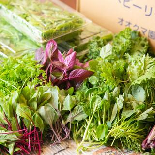 【こだわりの野菜】契約農家から仕入れる健康的な旬の地野菜!