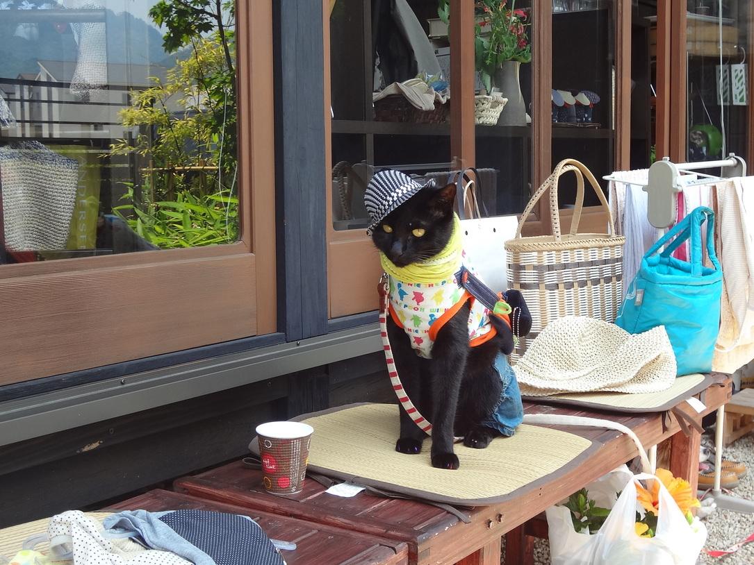 和みカフェはせがわ