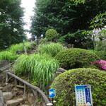 HATONOMORI - 鳩森八幡神社:富士塚