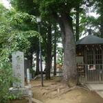 HATONOMORI - 鳩森八幡神社:将棋堂