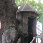 レ・グラン・ザルブル - 二階から眺めたツリーハウス