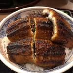 Seigetsu - 特上鰻丼