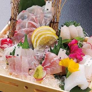 九州・天草牛深港直送の「天然活魚」の刺身は絶品です。