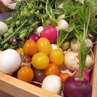 当店の野菜について