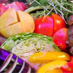 モンスターカフェ - 自家農園で有機農法で作った新鮮野菜達
