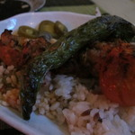 トルコ料理 ドルジャマフセン - 鶏肉のケバブのアップ