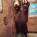 Hokkaidoubussan - 熊出没注意!