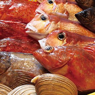 新鮮!鮮魚販売