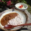 民 - 料理写真:手作りチキンカレー
