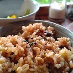 藤野倶楽部 百笑の台所 - 酵素玄米
