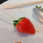 MOTIF - いちご飴。苺がジューシー。