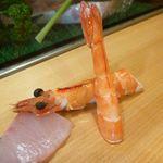 13279539 - 何海老だったかな>< 尻尾の部分が赤いので何とかと言われたのですが。甘くて美味しい海老でした。