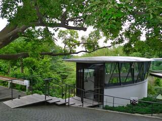 ハウス オブ フレーバーズ - ハウス・オブ・フレーバーズ②落葉高木の榎と一体化している外観