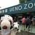 上野動物園 西園食堂 - つぬっこ&ちびつぬだよ!8月の終わりにお友だちと4人で1泊2日の東京旅行にやってきました。東京に着くとまずは上野動物園に、、、ちびつぬ「シャンちゃんに会いに来たの~」