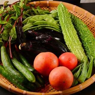 -食材-自家製の無農薬野菜を中心に楽しむ季節野菜。