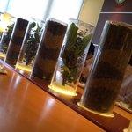 ドトールコーヒーショップ - 2012.06